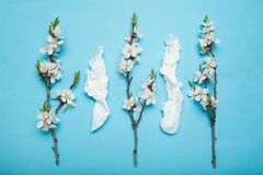 Spring and summer flowering, white wipes used. Allergy and runny nose, concept stock photos
