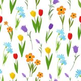 Spring and summer garden and wild flowers seamless pattern. Floral nature vector background stock illustration