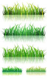 Spring Or Summer Green Grass Set Royalty Free Stock Images