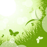 Spring-summer green theme. Royalty Free Stock Images