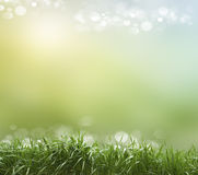 Spring or summer heat abstract Royalty Free Stock Image