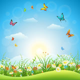 Spring or summer landscape. With green grass, flowers and butterflies Royalty Free Stock Image