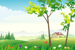 Spring or summer landscape. Illustration of a beautiful nature view Stock Photos