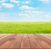 Spring or summer with rice field background and wood table Stock Photos