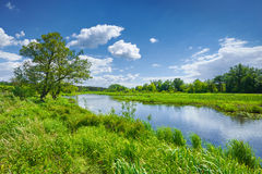 Spring summer river landscape blue sky clouds countryside royalty free stock images