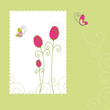 Spring summer rose greeting card Stock Image