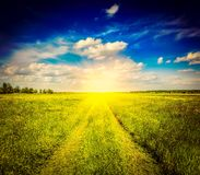 Spring summer rural road in green field landscape Stock Photo