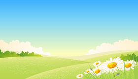 Spring And Summer Seasons Landscape Royalty Free Stock Photos