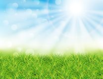 Spring or summer sunny day vector illustration. Green grass, rays of sun and bokeh. Landscape Royalty Free Stock Image