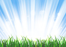 Spring Or Summer Sunrise Grass Landscape Stock Photography