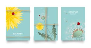 Spring or summer wild florals gift vector set with dandelions and rope. Vintage retro templates flyers or card design. Bright yell. Ow flowers, seed heads and Royalty Free Stock Photography