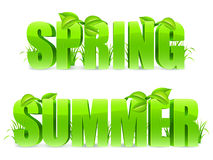 Spring and Summer words. Green Spring and Summer words, with fresh leaves and grass Royalty Free Stock Images