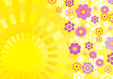 Spring sun background Stock Photos