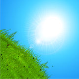 Spring sun over the hill. Spring Background with Sunshine Reflecting Over Green Hill and Blue Sky Stock Images