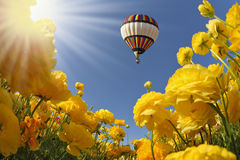 The spring sun shines flying balloon Stock Photography