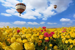 The spring sun shines flying  balloon Royalty Free Stock Image