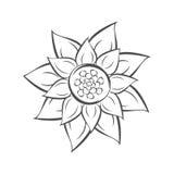Spring sunflower. Stock Image