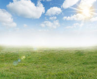 Spring sunlight background Stock Images