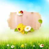 Spring sunny background Royalty Free Stock Image