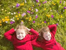 Spring sunny day, first flowers and happy children royalty free stock image