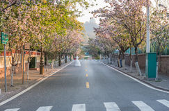 Spring sunny day in the mall road Qingdao. Eastphoto, tukuchina,  Spring sunny day in the mall road Qingdao Royalty Free Stock Photography