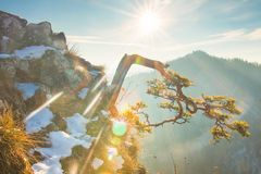 Spring sunny day in snowy mountains stock photography