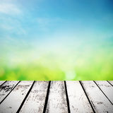 Spring sunny field Stock Image