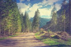 Spring sunny mountain landscape in vintage style. Stock Images