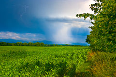 Spring sunny and rainy landscape Stock Photos