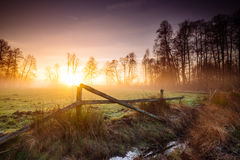 Spring sunrise landscape Stock Photos