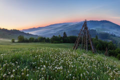 Spring sunrise landscape on the hills of the Carpa. Morning mist mountains Carpathians dandelions landscape grass spring hills Stock Photography