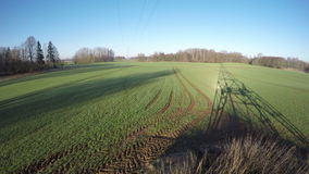 Spring sunrise trees and electrical pylon shadows on green dewy wheat field. Spring sunrise time trees and electrical pylon shadows on green dewy wheat field in stock video