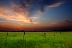 Spring sunset Royalty Free Stock Photo
