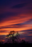 Spring sunset. Beautiful sunset view from the window Royalty Free Stock Images