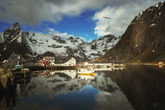 Spring sunset - Reine, Lofoten islands, Norway Royalty Free Stock Image