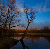 Spring sunset on the river Luga, Novgorod oblast ,Russia Stock Images