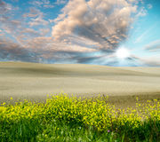Spring sunset in Tuscan Countryside, Italy Stock Photo