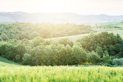 Spring sunset in Tuscany, Italy Stock Images