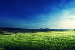 Spring sunset in Tuscany, Italy Royalty Free Stock Image