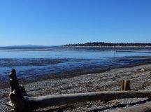 Free Spring Sunshine At Birch Bay Beach Stock Images - 113005324