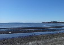 Free Spring Sunshine At Birch Bay Beach Royalty Free Stock Image - 113005446