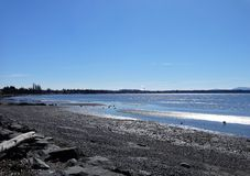 Free Spring Sunshine At Birch Bay Beach Royalty Free Stock Image - 113005676