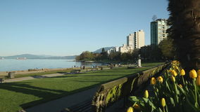 Spring Sunshine, English Bay, Vancouver stock footage