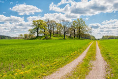 Spring in Sweden. Springtime in the countryside of Ostergotland, Sweden Stock Photography