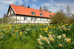 Spring in Swedish park Royalty Free Stock Images