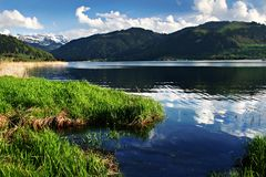 Spring Swiss mountans lake. The green meadows lay in morning chill and cooling sweats Royalty Free Stock Images