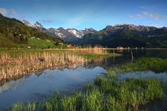 Spring Swiss mountans lake. The green meadows lay in morning chill and cooling sweats Stock Photography