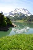 Spring in Switzerland Stock Images