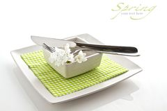 Spring table setting Stock Images