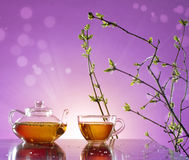 Spring tea Stock Image